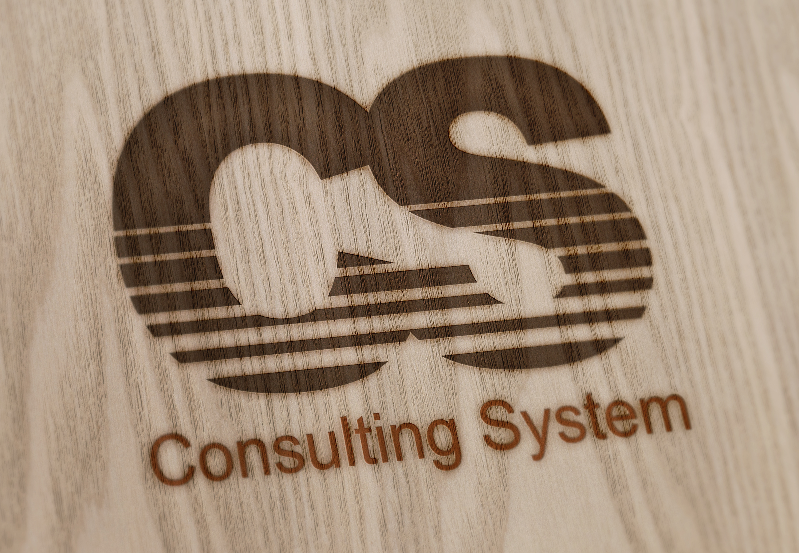 CONSULTING SYSTEM